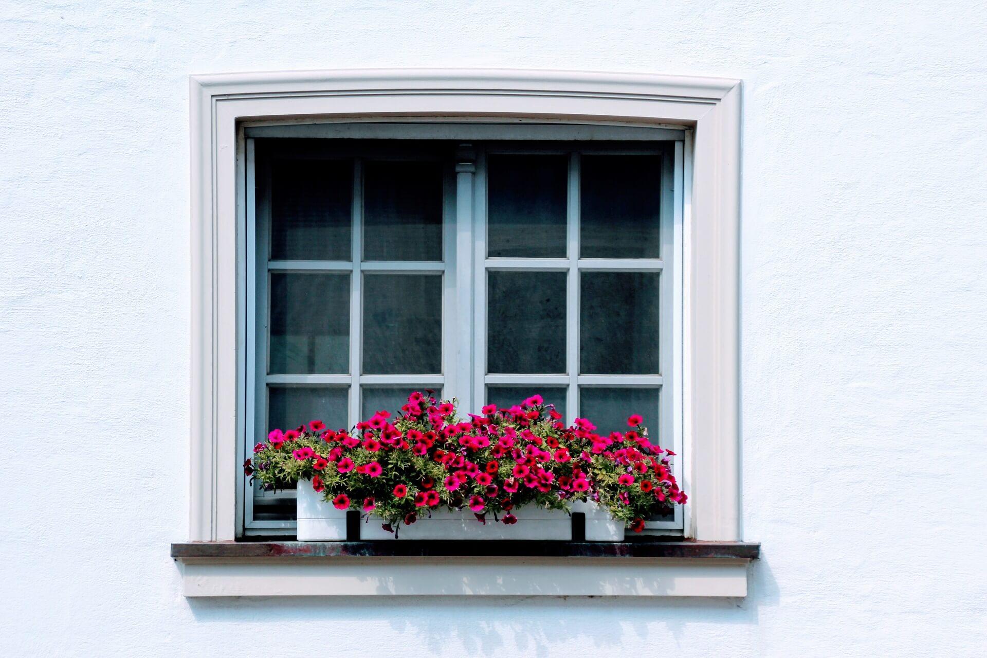 fasadni-omitka-weber-kral-barev-kladno